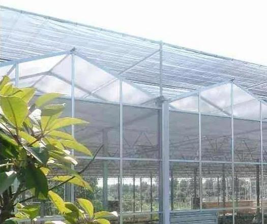 连栋PC阳光板-玻璃温室.jpg