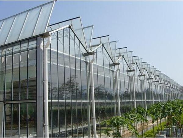 玻璃温室建造工程中不容忽视的桁架结构!