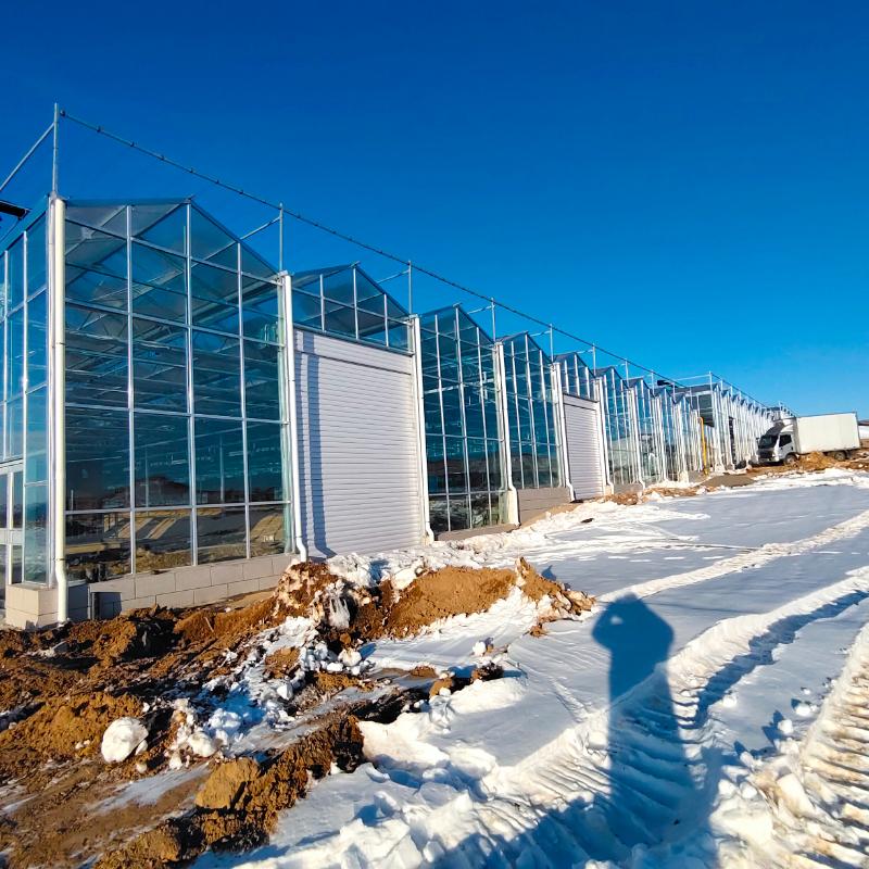智能温室大棚系统的结构是怎样的?它的造价又是多少?