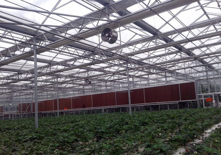 智能温室建造、温室大棚施工建造步骤!