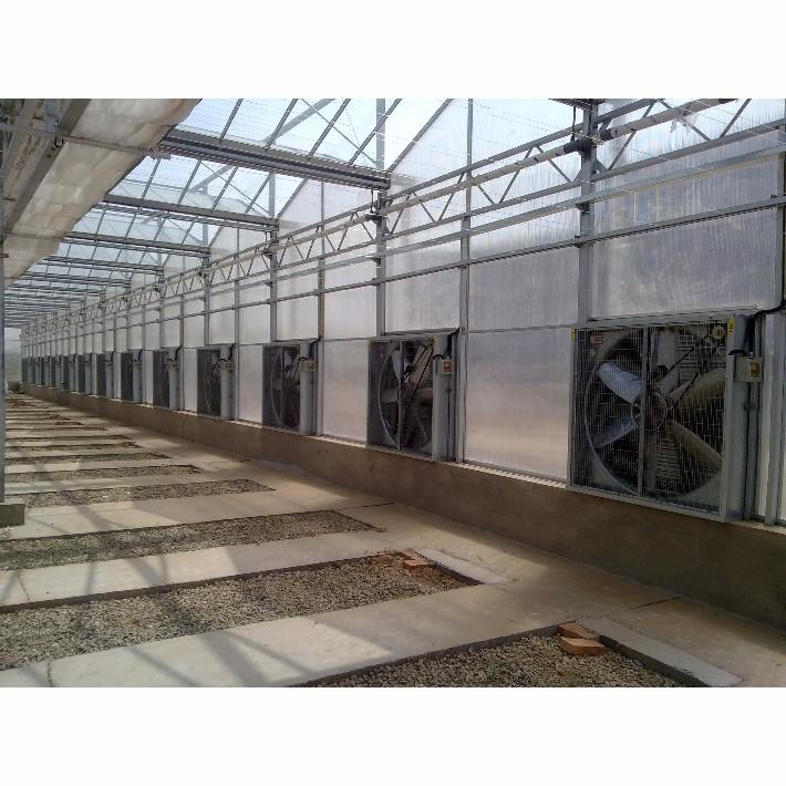 玻璃温室大棚风机.jpg