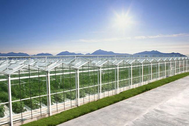 我国西南低纬度地区温室设计建造有哪些点需要注意?